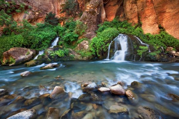 Big Spring - Zion National park