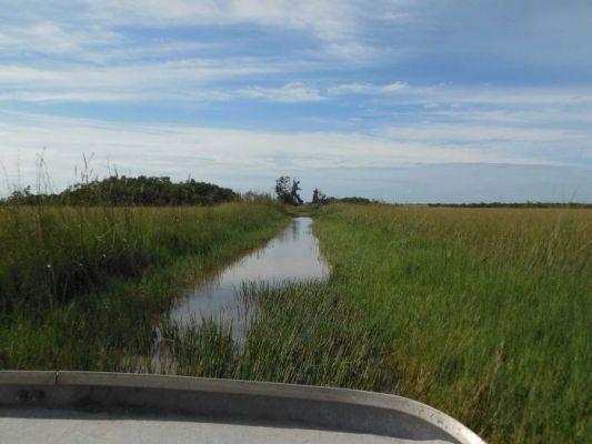 Everglades - reisverhaal