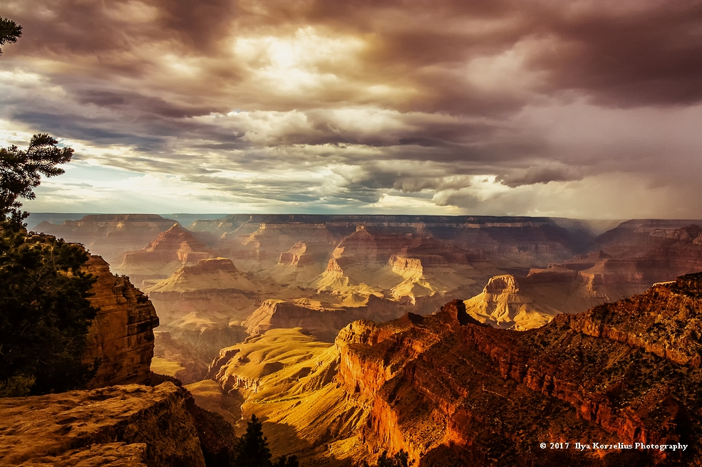 Ilya Korzelius - Grand Canyon